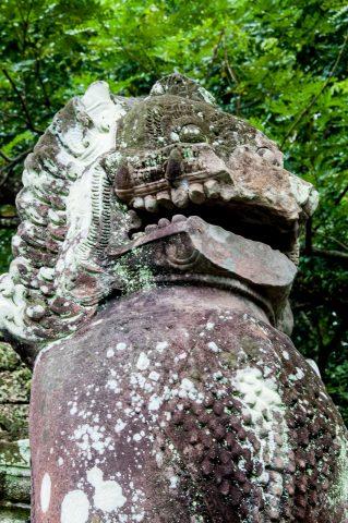 Preah khan, Angkor Wat