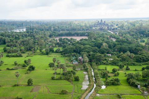 View from balloon, Angkor Wat