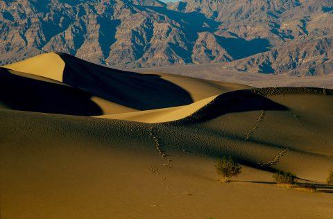 Mesquite Dunes, Death Valley CA (1999)