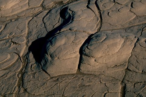 Dried sand, Mesquite Dunes, Death Valley CA (1999)
