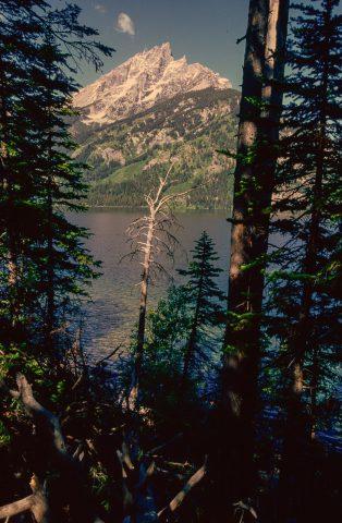 Mount Moran & Jenny Lake, Grand Tetons, Wyoming (2000)