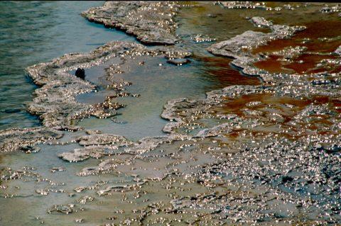 Silex Spring, Lower Geyser Basin, Yellowstone WY (2000)