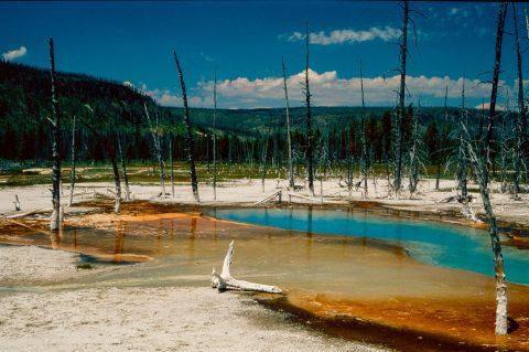 Opalescent Pool, Black Sand Geyser Basin, Yellowstone WY (2000)