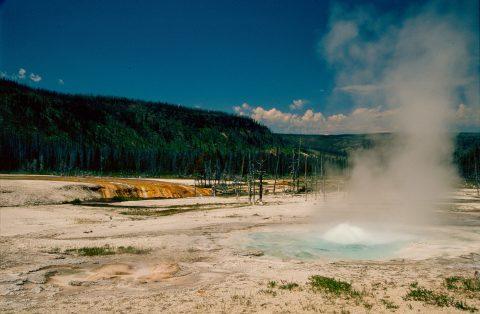 Spouter Geyser, Black Sand Geyser Basin, Yellowstone WY (2000)