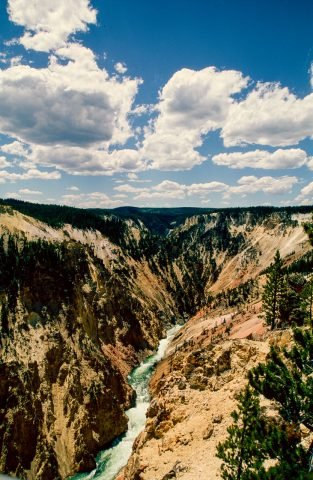Grand Canyon of Yellowstone, WY (2000)