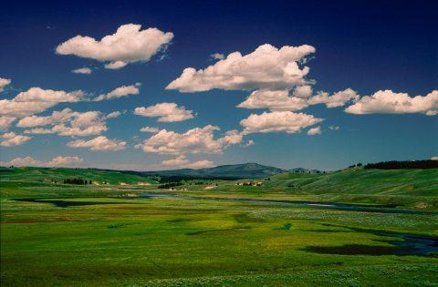 Yellowstone River & Hayden Valley, Yellowstone WY (2000)