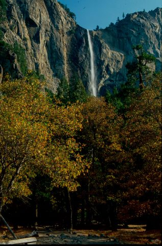 Brideveil Falls, Yosemite (1999)