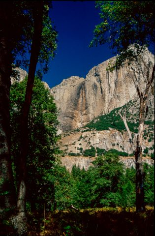 View from Cook's Meadow, Yosemite (!999)