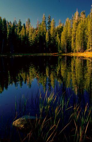Siesta Lake, Yosemite (1999)