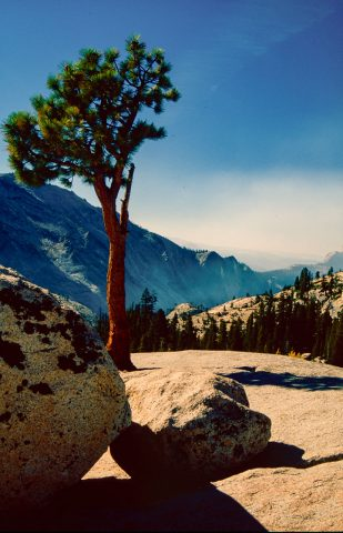 Olmstead Point, Yosemite (1999)