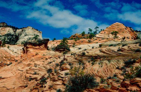 Upper Zion Canyon, Utah (1996)